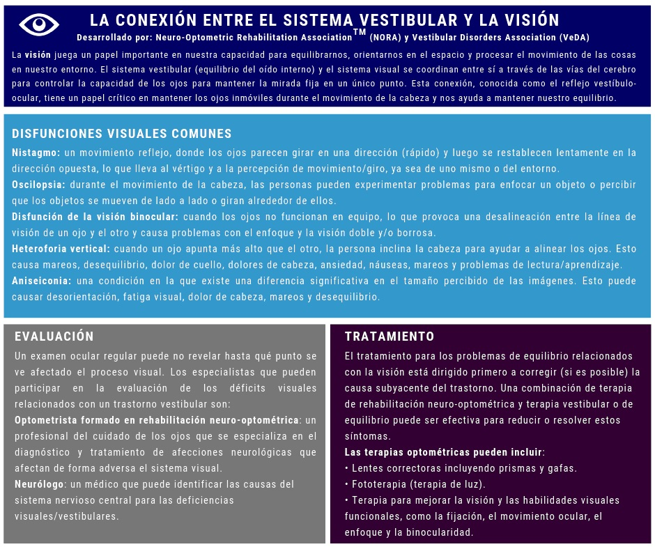 sistema vestibular y visión